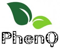 PhenQ South Africa